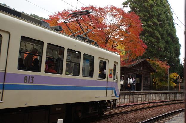 二ノ瀬駅の紅葉_9