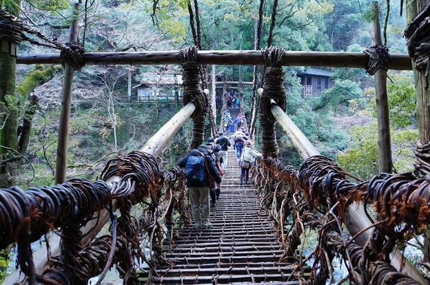 祖谷のかずら橋_2