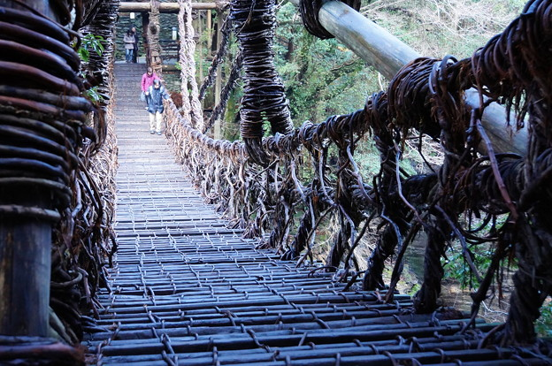 祖谷のかずら橋_6