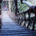 写真: 祖谷のかずら橋_6