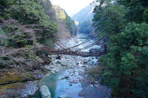 祖谷のかずら橋_7
