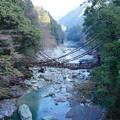 写真: 祖谷のかずら橋_7