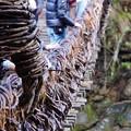 写真: 祖谷のかずら橋_8