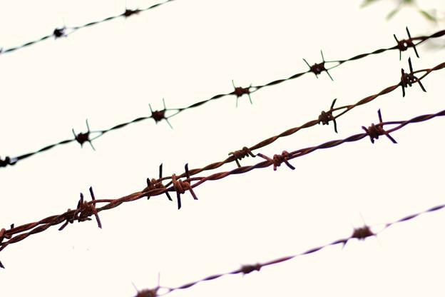 自由への渇望3