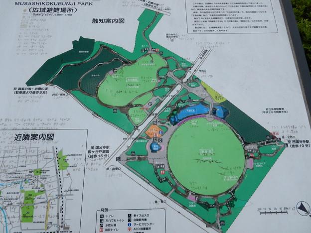 武蔵国分寺公園案内図