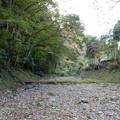 Photos: 涸れてる小津川