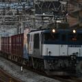 写真: 貨物列車 (EF641026)