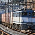 写真: 貨物列車 (EF652067)