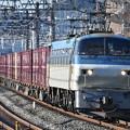 写真: 貨物列車 (EF66 107)