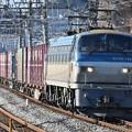 写真: 貨物列車 (EF66116)
