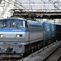写真: 貨物列車 (EF66 118)