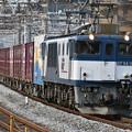 写真: 貨物列車 (EF641023)