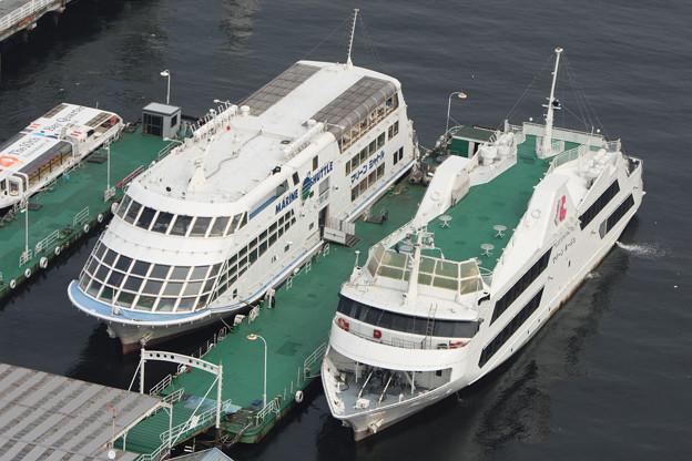 マリンタワーより横浜港を望む -9