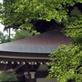 Photos: 円覚寺仏殿20160907