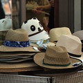 帽子20160907