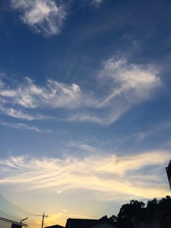 空の顔82006