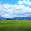 Photos: 田園風景02