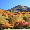 Photos: 黄紅葉と八甲田大岳