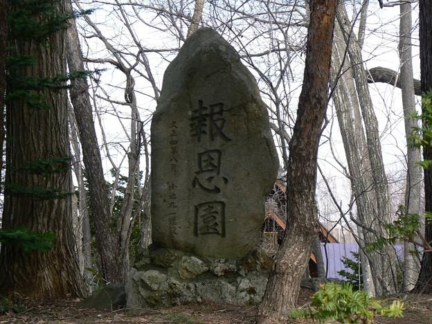 Photos: 報恩学園P1010436
