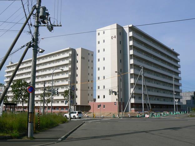 Photos: 札幌市厚別区青葉町6丁目交差点