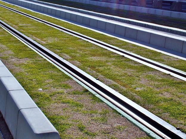 芝生の線路
