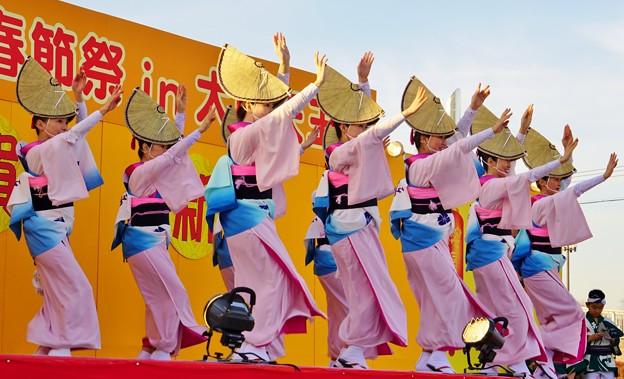 春節祭阿波踊り
