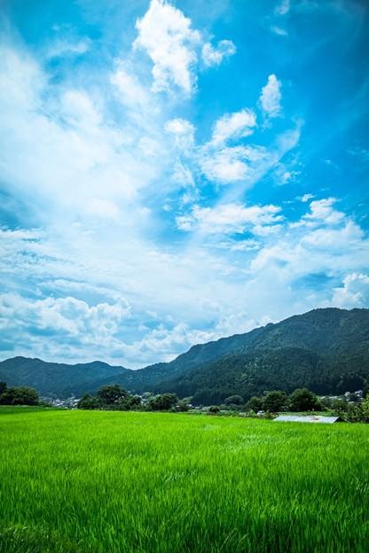 京都 - 大原