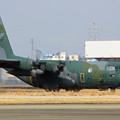 C-130H 95-1082 第401飛行隊 IMG_1495_2