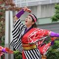 大阪大会2016 帯屋町筋16