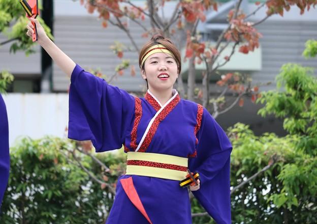 Photos: 大阪大会2016 まいど連10