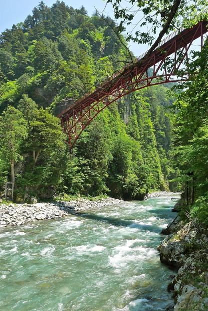 新緑に架かる橋