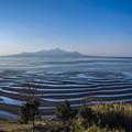 写真: 砂紋と雲仙普賢岳