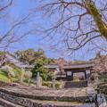 写真: 春光寺