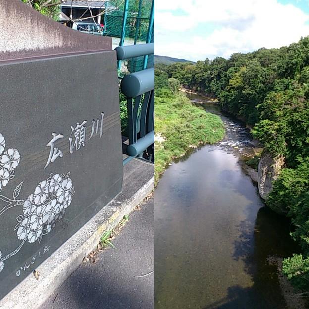 近所を流れる川