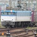 EF 81 501 機関車