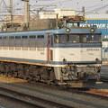 EF81-453