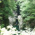 Photos: 山間