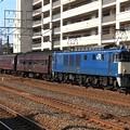 9824レ EF64 1052+旧型客車 6両