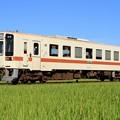 Photos: 241レ ひたちなか海浜鉄道キハ11-6