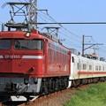 Photos: 回9847レ EF81 133+キヤE193系秋アキID-21編成 3両