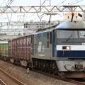 Photos: 5073レ EF210 139+コキ