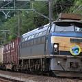 5070レ(遅延) EF66 36+コキ