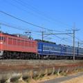Photos: 9110レ EF81 81+12系 5両