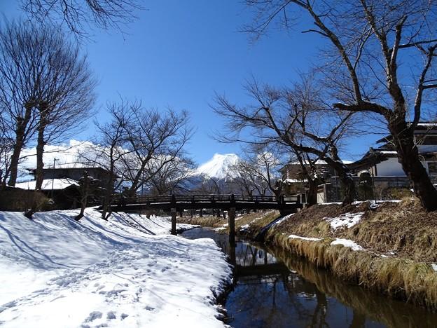 写真: 忍野村から