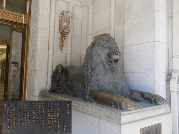 写真: 三越のライオン像