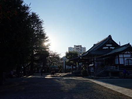 新井薬師寺 (中野区新井)