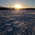 写真: 雪原2