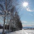 写真: 輝く雪面