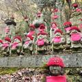 写真: 高尾山 (1)