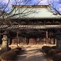 Photos: 2月_豪徳寺 3